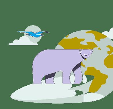 Essay on Zoo