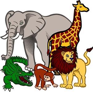 Animal names in Sanskrit