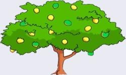 Essay on Mango Tree in Sanskrit