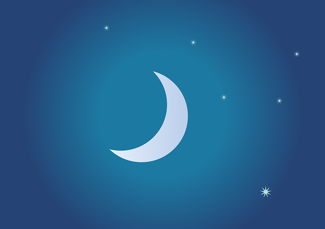 Essay on moon in Sanskrit