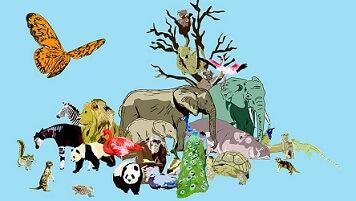 Picture Description of a Zoo in Sanskrit