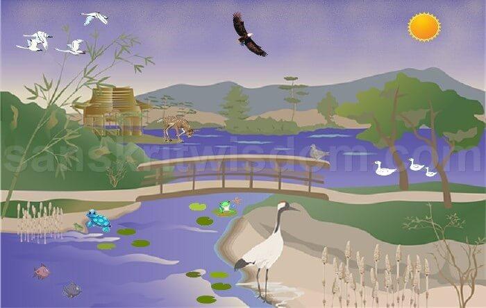 Short picture description of Pond in Sanskrit