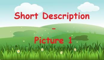Short Description - Picture 1